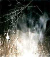 Mist Ghost