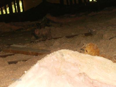nov,2011 in the attic